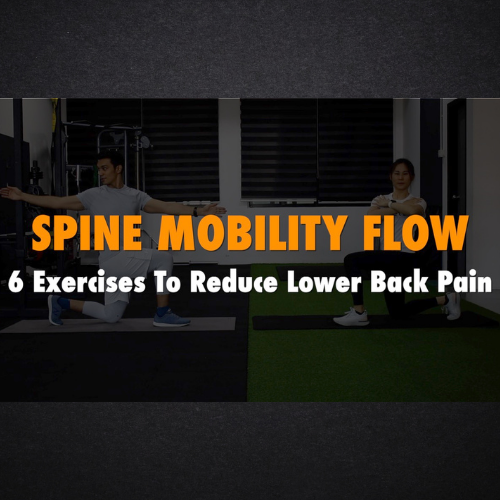 Spine Mobility Flow - 6 Exercises To Reduce Lower Back Pain | Achieve Warm Up